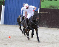 Polo @ Emsworth